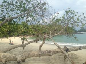 Playa M.A.
