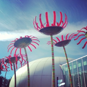 An afternoon in Who-ville.  Loved these Sonic Blooms and hearing their symphonic sounds and we walked under them.